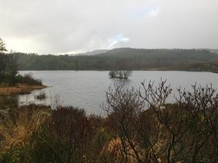 Llyn Bodgynydd