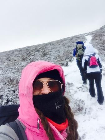 Wintery paths