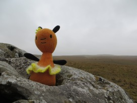 Melanie Rabbit on the moor
