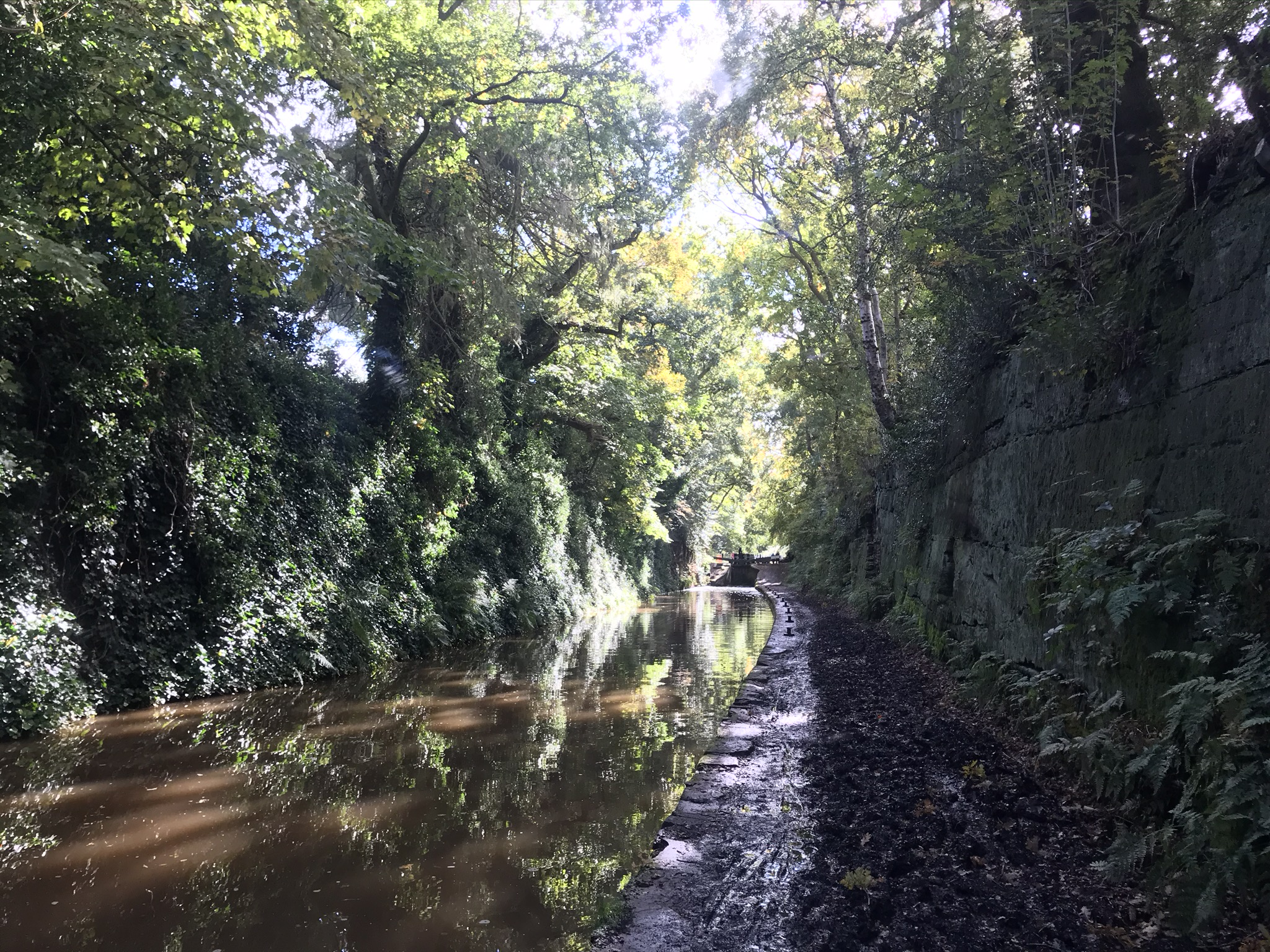A muddy towpath next to a canal cut deep into the rock. Tall trees overhang the cutting and the sun is glinting through the trees creating patches of light on the brown water.