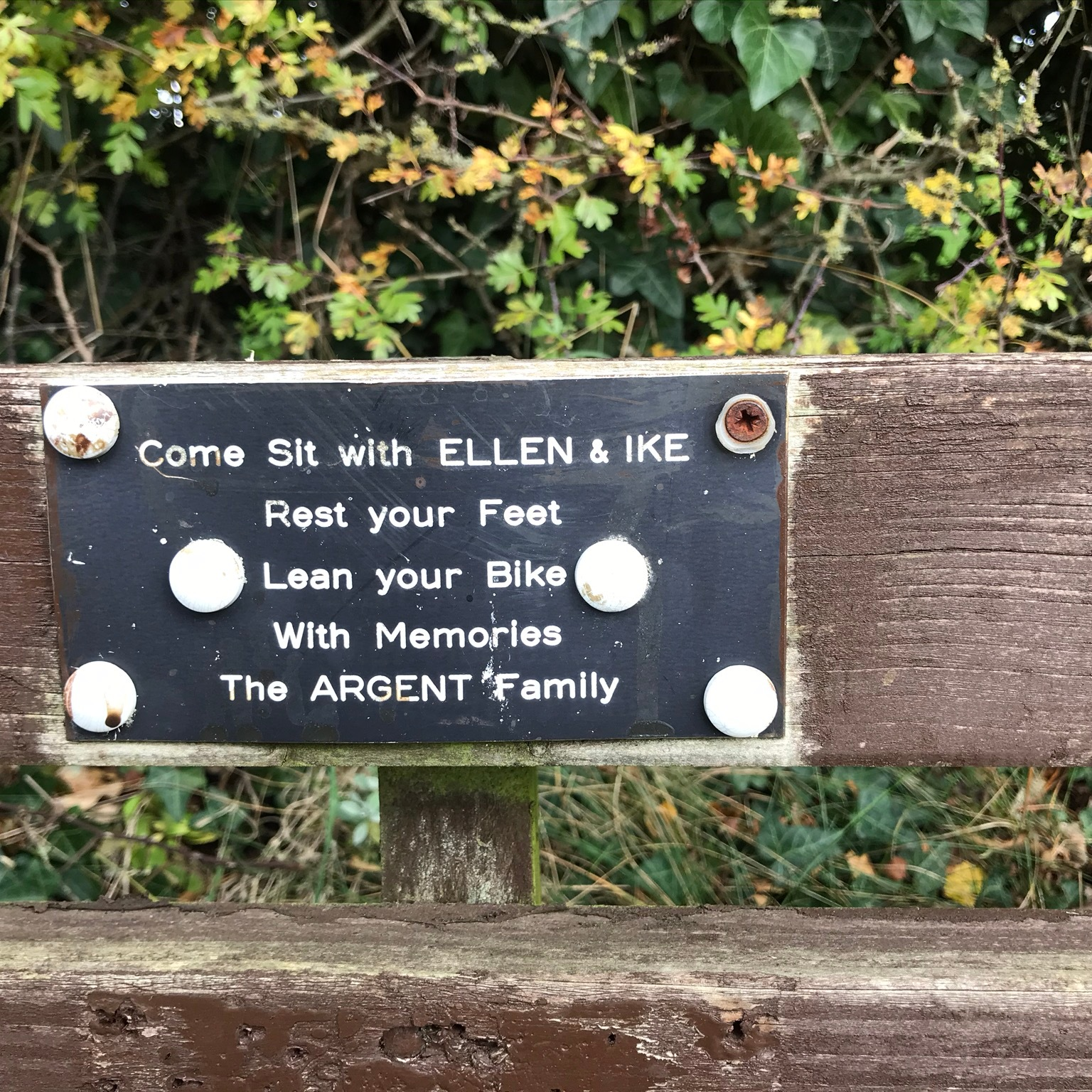 "A black sign with white writing on the wooden back of a bench. It the background the hawthorn leaves in the hedge are starting to turn yellow. The sign says ""Come Sit with ELLEN & IKE, Rest your Feet, Lean your Bike. With Memories, The ARGENT Family"""