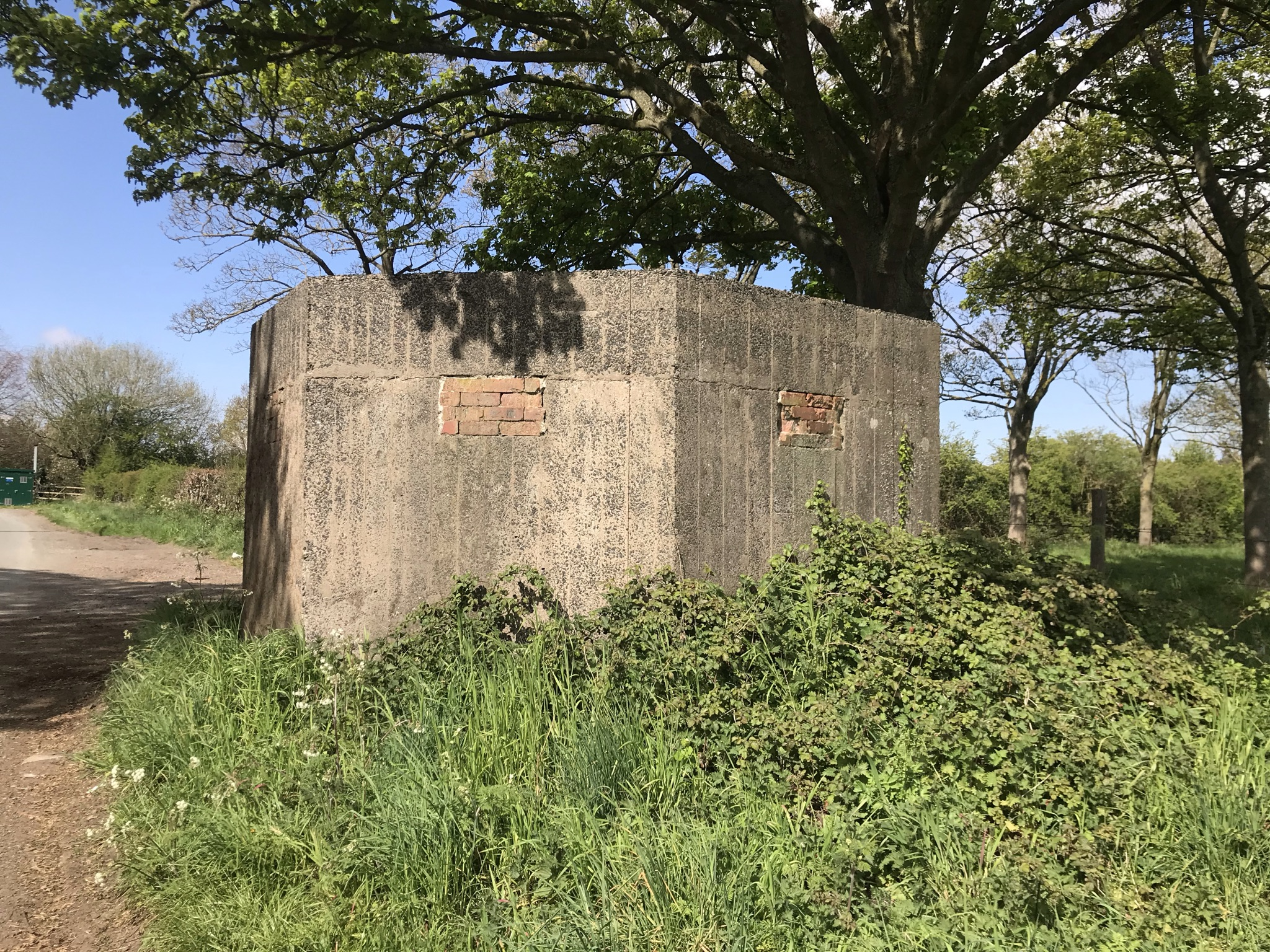 A concrete WW2 pill box under a large oak tree. The windows for the guns are bricked up.