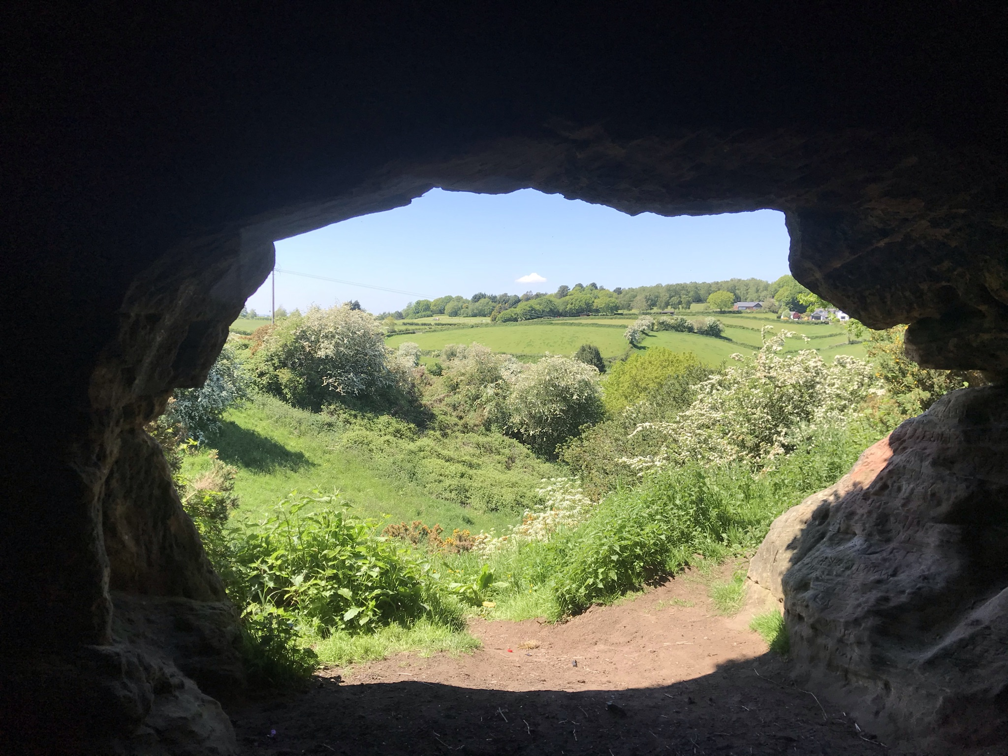 Rolling fields and Hawthorn bushes covered in white flowers frames by the entrance to a cave
