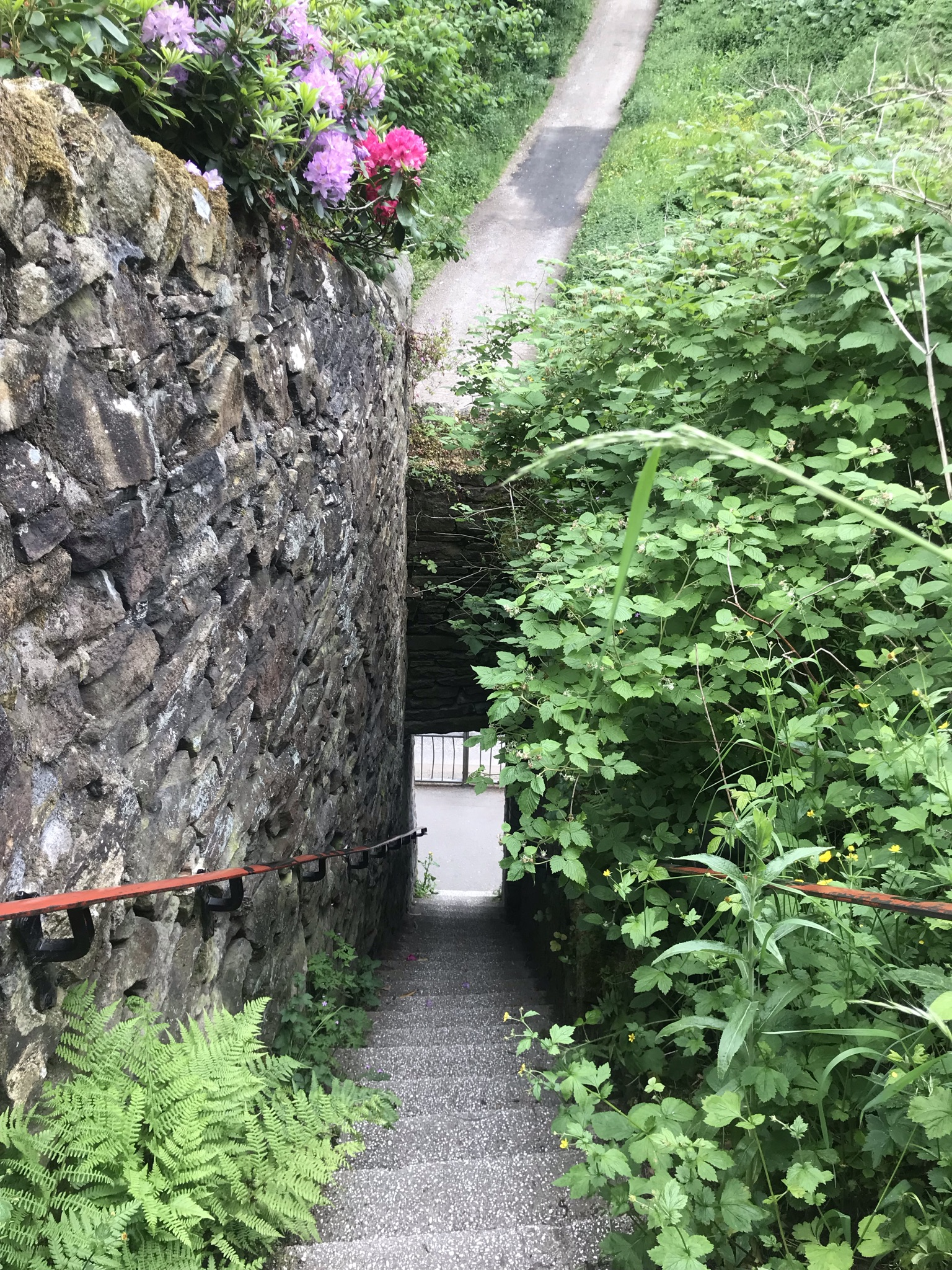 VERY steep steps with a stone wall on one side and greenery on the other head down to a road.
