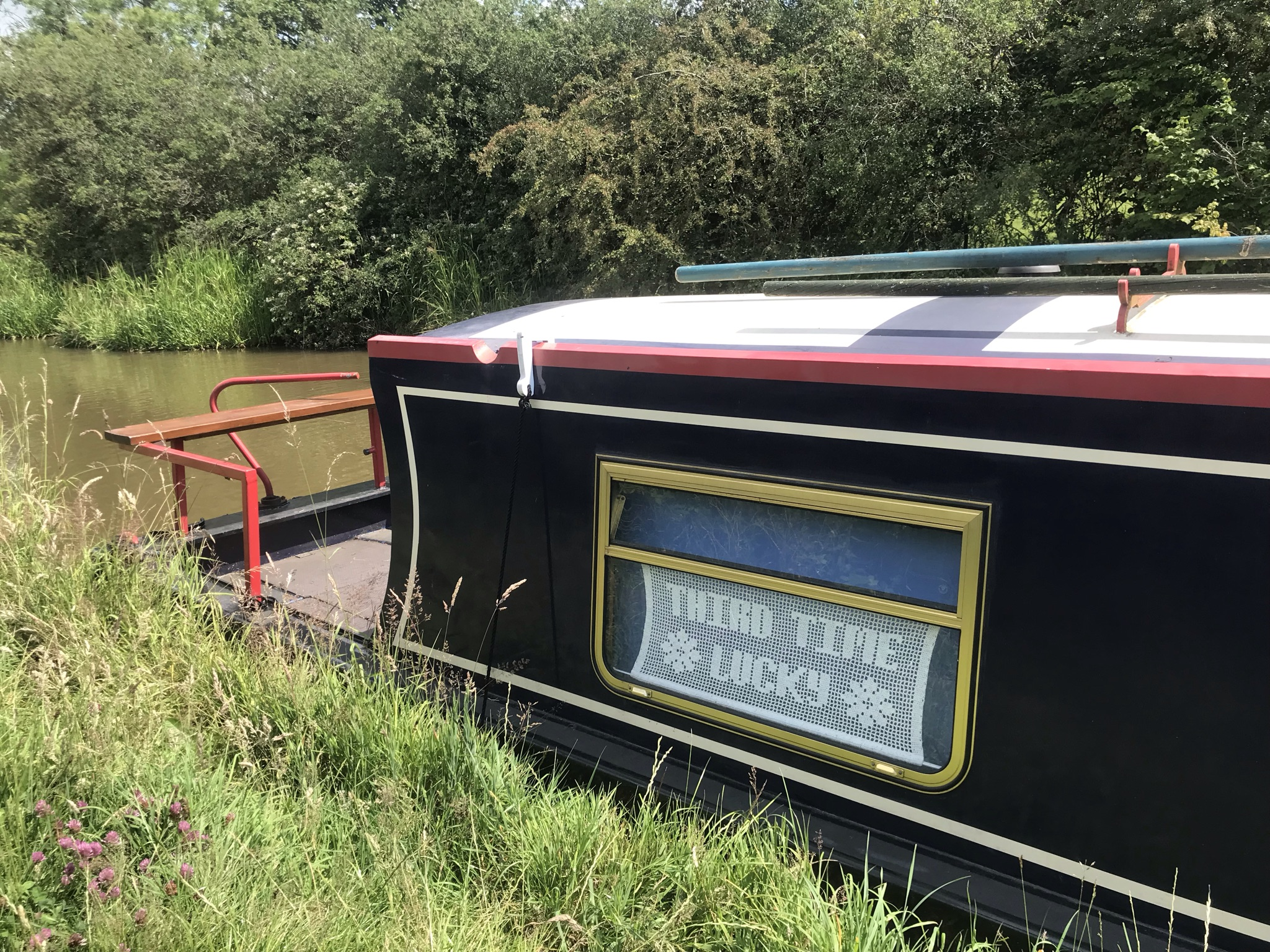 """A narrowboat moored along side long grass, the far bank has a tall, wild hedge. A sign made of lace in the boat window reads """"third time lucky"""""""